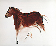 Horse and Hind: Palaeolithic cave painting from Altimira southern Spain. Lithograph
