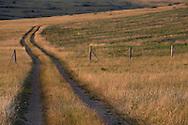 23/08/13 - CAUSSE MEJEAN - LOZERE - FRANCE - Pour illustrer les sujets lies a l avenir de l agriculture - Photo Jerome CHABANNE
