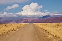 CAMINO EN LA PUNA (RUTA 11) ENTRE CASABINDO Y ABRA PAMPA, PROV. DE JUJUY, ARGENTINA