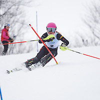 U16 Mid-Winter Can-Ams Devils Glen Ski Club, Alpine Ontario SL February 21, 2016
