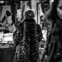 Venice Realto Fish Market Feb 2018