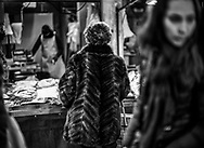 Fish Market Venice Feb 2018