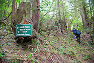 Eagle Nook Wilderness Resort and Spa is located on a remote area of Vancouver Island.   The Eagle Nook loop trail takes you through private, old growth forests and to views of the ocean where starfish cling to rocks at low tide.
