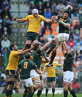 CAPE TOWN, SOUTH AFRICA - Saturday 28 September 2013, Flip van der Merwe of South Africa during the Castle Lager Rugby Championship test match between South Africa (Sprinkboks) and Australia (Wallabies) at DHL Newlands in Cape Town.<br /> Photo by Roger Sedres/ ImageSA