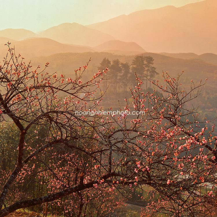 Vietnam Images-Landscape-Sapa Hoàng thế Nhiệm