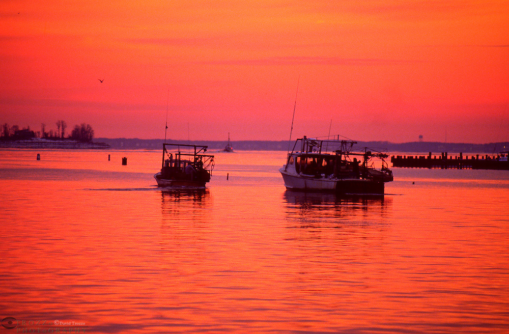 Annapolis, Maryland--  Workboats leave the safe harbor of Spa creek at the mouth of the Severn River and the Chesapeake Bay in the early winter morning. The winter months are the best time of year to harvest oysters from Chesapeake Bay despite the fridgid tempatures.