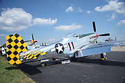 Another of the beautifully restored P-51 Mustangs.