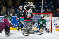 KELOWNA, CANADA - FEBRUARY 10: Kelowna Rockets' mascot, Rocky Racoon player hockey with mini minor hockey players during intermission against the Vancouver Giants on February 10, 2017 at Prospera Place in Kelowna, British Columbia, Canada.  (Photo by Marissa Baecker/Shoot the Breeze)  *** Local Caption ***