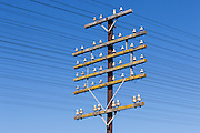 railway power and communications signalling cables on pole at Illabo, New South Wales, Australia