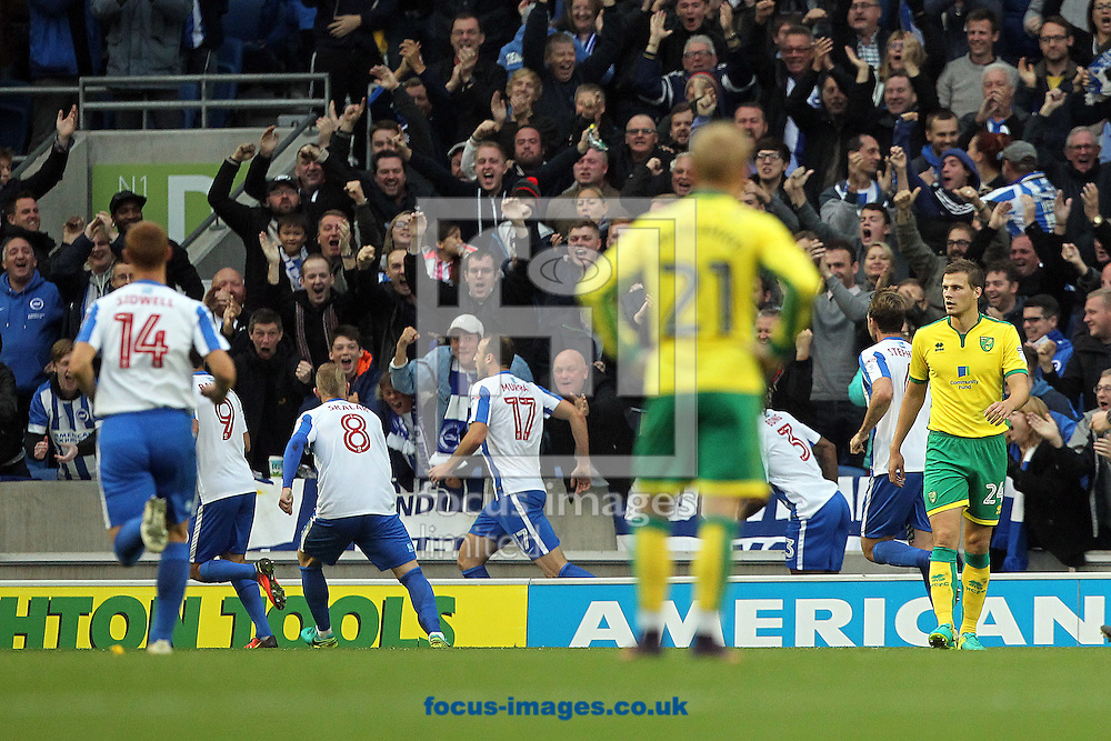 The Norwich players look dejected as Glenn Murray of Brighton &amp; Hove Albion celebrates scoring his sides 2nd goal during the Sky Bet Championship match at the American Express Community Stadium, Brighton and Hove<br /> Picture by Paul Chesterton/Focus Images Ltd +44 7904 640267<br /> 29/10/2016