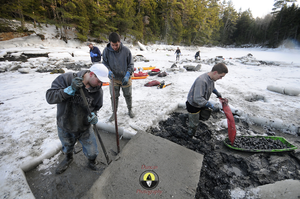 """2/17/11 -- HARPSWELL, Maine. David Wilson Jr, left, of Harpswell, flips over a 10-inch thick chunk of ice with a prybar as his father gathers up his sled into a bag.  The Wilsons, along with Nate Reno, center, and several other diggers cut into the Quahog Bay's layer of ice  on Thursday afternoon. .Quahog Bay was reopened for digging on Feb 11 2011 after many years of closure, according to Department of Marine Resources Biotoxin Monitoring Manager, Darcie Couture. She wrote, """"This area had been closed for many years due to failing water quality, caused by bacterial pollution. A serious pollution source was recently identified and remediated.  The area will close in June for the summer, because unfortunately, this area, like many others on the Maine coast, suffer from the increased pressure of a seasonal summer population, which negatively impacts water quality, and results in many of our shellfish resources remaining closed to harvest during that time."""" Photo by Roger S. Duncan."""