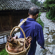 Xia's grandfather, Feng Shui Master Wu, carries a pig's head to the village's local temple. <br /> <br /> Shielded from the rest of Chinese civilization by a cascade of steep mountains, this village and the other surrounding lush villages have kept their Dong minority traditions and arts from centuries ago.<br /><br />With a history that goes back to the Tang dynasty, the area is adorned with stunning wooden Flower Bridges, bell towers and cascades of beautiful old houses. The Dong people have no written language, but use fine embroidery to communicate their love.<br /><br />Yet, as highways and tunnels plough through these mountains, the future of the village&rsquo;s 525 households is at crossroads. There is already a government blueprint to turn Dimen into a satellite town in the coming three years, as China embarks on its latest urbanization drive.