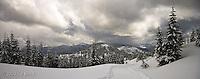 along a cross country ski trail in the Cascade Mountain Range, Mount Tahoma Trails, Washington, USA