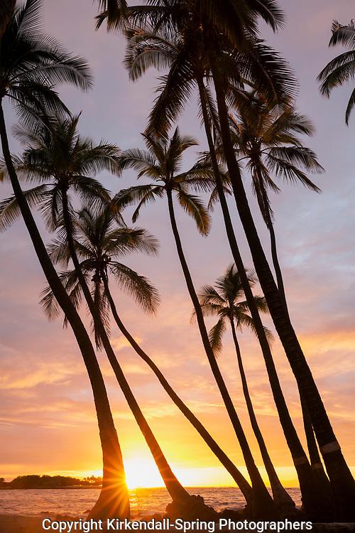 HI00458-00...HAWAI'I - Sunset over the Pacific Ocean from Kekaha Kai State Park along the Kona Coast on the island of Hawai'i.