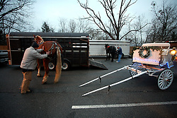 "Jeffersontown hosted its annual ""Holiday on Gaslight Square"" Saturday, December 6, 2008. Ted Willett, left, prepares ""Thunder"" to drive down Watterson Trail with Santa and Mrs. Claus. Michael Alexander, back, with ""Pie"". (By Jonathan Palmer, Special to The Courier-Journal) December 6, 2008"