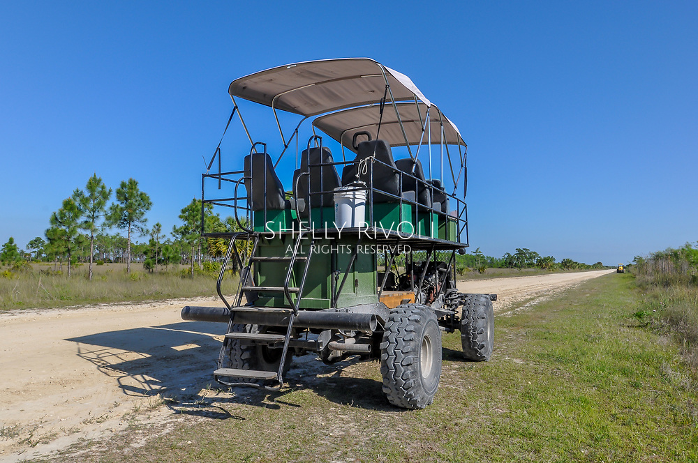 "A swamp buggy awaits its next tour in Big Cypress National Preserve. These custom-built vehicles utilize truck parts, tractor parts, old vehicle seats, welded bars and tarp caopies -- and ""whatever works"" to create a swamp-worthy touring vehicle for passengers."