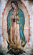 Vatican City dec 12th 2015, holy mass in St Peter's Basilica for festivity of Our Lady of Guadalupe. In the picture the icon of the Virgin