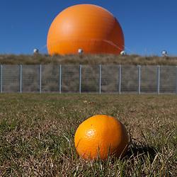 Oranges and the Orange Baloon, Great Park, Irvine, Orange County, CA