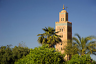The minaret of the Koutoubia Mosque surrounded by palm trees in Marrakech, Morocco