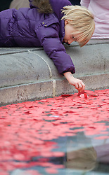 © London News Pictures. 11/11/2011. London, UK. A young boy throws a paper poppy in to the fountains at Trafalgar Square, London today (11/11/2011) before a 2 minute silence at a Remembrance day ceremony. Photo Credit : Ben Cawthra/LNP