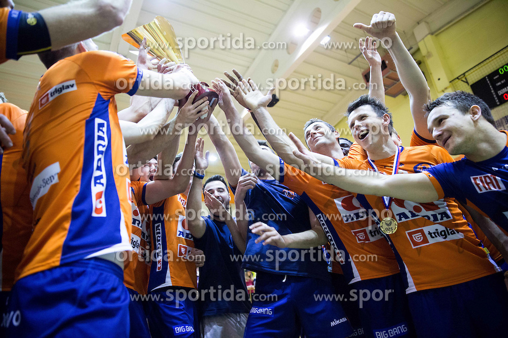 Players of ACH celebrate after winning during volleyball match between ACH Volley   and Salonit Anhovo in Final of Slovenian Cup 2014/15, on January 17, 2015 in Sempeter, Slovenia. Photo by Vid Ponikvar / Sportida