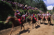 TODOS  SANTOS, Guatemala. Western Highlands, Huehuetenango, Todos Santos. Mayan traditional festival. Todos Santos Horse Race, the 'Skach Koyl' on All Saints Day 1st November; the 'Day of the dead' November 2nd. Mayan dances about Spanish 'Conquistadores' and Mayan Spirits, accompanied by marimbas take place October 31st.