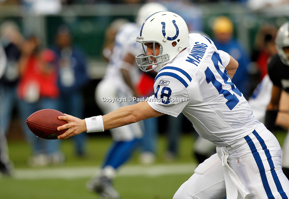 Indianapolis Colts quarterback Peyton Manning (18) hands off the ball on a running play during the NFL week 16 football game against the Oakland Raiders on Sunday, December 26, 2010 in Oakland, California. The Colts won the game 31-26. (©Paul Anthony Spinelli)