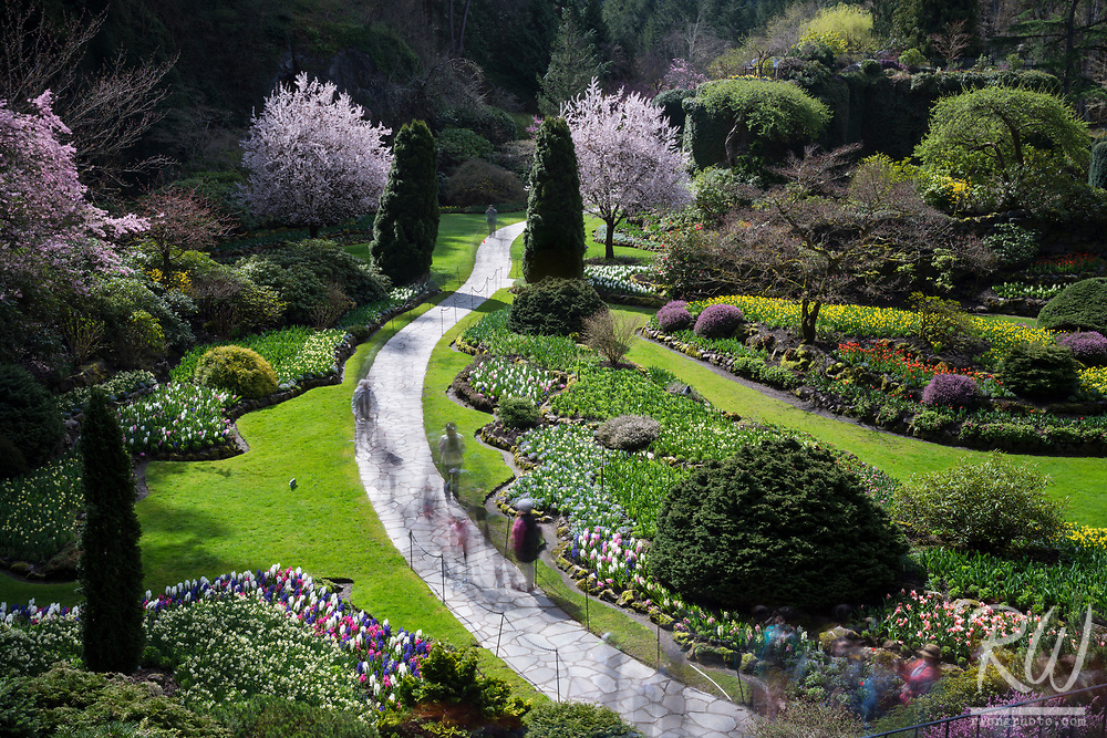 Spring at The Butchart Gardens, Vancouver Island, B.C., Canada