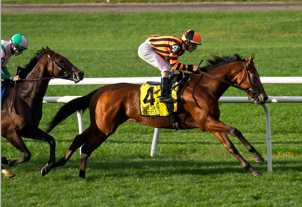 """Little Mike"", with Ramon Dominguez aboard, streaks out for the lead, but finished off the board that day in the Joe Hirsch Handicap of 2012. In 2013 he was an upset winner."