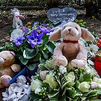 Nederland, Amsterdam, 29 augustus 2016.<br />Op de Amsterdamse begraafplaats Sint Barbara is maandagmiddag een afscheidsdienst voor de baby die begin juni dood werd aangetroffen bij de Sloterplas.<br />Het lichaampje van het vermoedelijk pasgeboren, voldragen jongetje werd op 8 juni aan de waterkant bij de oostoever van de plas aangetroffen door een wandelaar die zijn hond uitliet. <br /><br /><br /><br />Foto: Jean-Pierre Jans