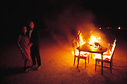 A dinner table is set on fire in the desert at Burning. Earlier that evening, 8 celebrants have dinner. Burning Man is a performance art festival known for art, drugs and sex. It takes place annually in the Black Rock Desert near Gerlach, Nevada, USA..