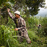 Young boys working in the sugar cane fields high up in the mountains. They work all week in the field and on Saturdays they join a local ALternative Learning System provided for by Quidan. Quidan-Kaisahan is a charity working in Negros Occidental in the Philippines. Their aim is to keep children out of work to secure them education.