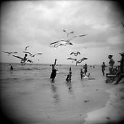 Panama City Beach - Holga 120/Ilford Film