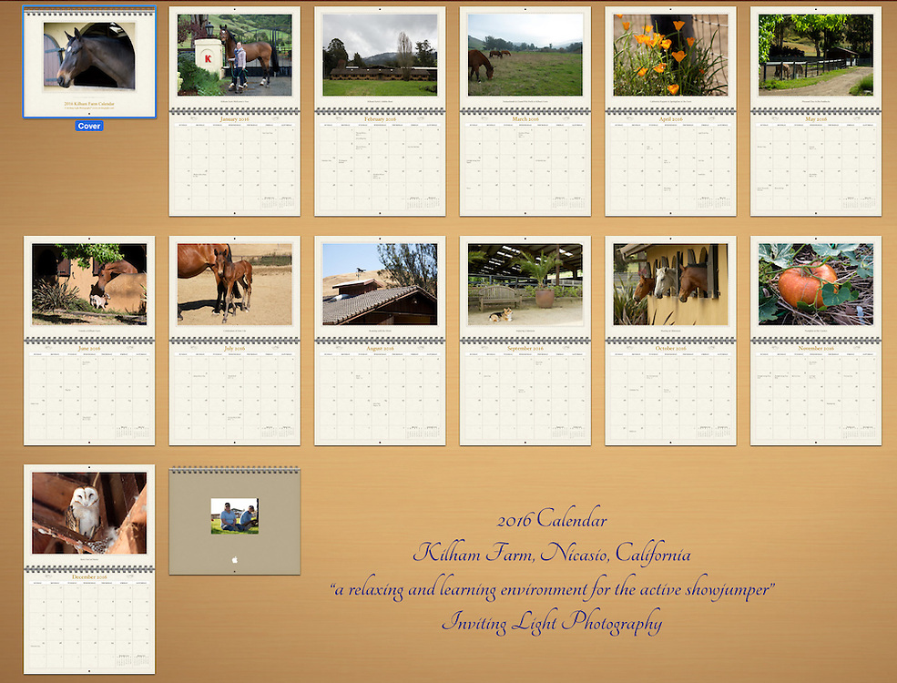 These are 12 month calendars, 13&rdquo; x 10.4&rdquo; (slightly larger in size), and beautifully printed by Apple Print Services. Because of the higher quality printing and being produced in smaller quantities, they are of higher value than the common calendars found in many stores. For the cost of $22.60 (plus shipping), you receive 12 beautiful images from Inviting Light Photography to hang on your wall in your office or home. These calendars are being sold at cost to make them as available as possible for everyone to enjoy all year long.<br />