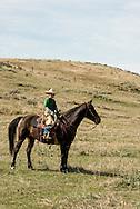 Cowboy, kids, quarterhorse, Lazy SR Ranch, branding, Wilsall, Montana