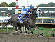 Jockey Joel Rosario rides Frosted to win the Pennsylvania Derby at Parx Racing Saturday September 19, 2015 in Bensalem, Pennsylvania.  (Photo by William Thomas Cain)