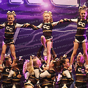 5048_Chiltern Cheetahs - Chiltern Cheetahs Swift