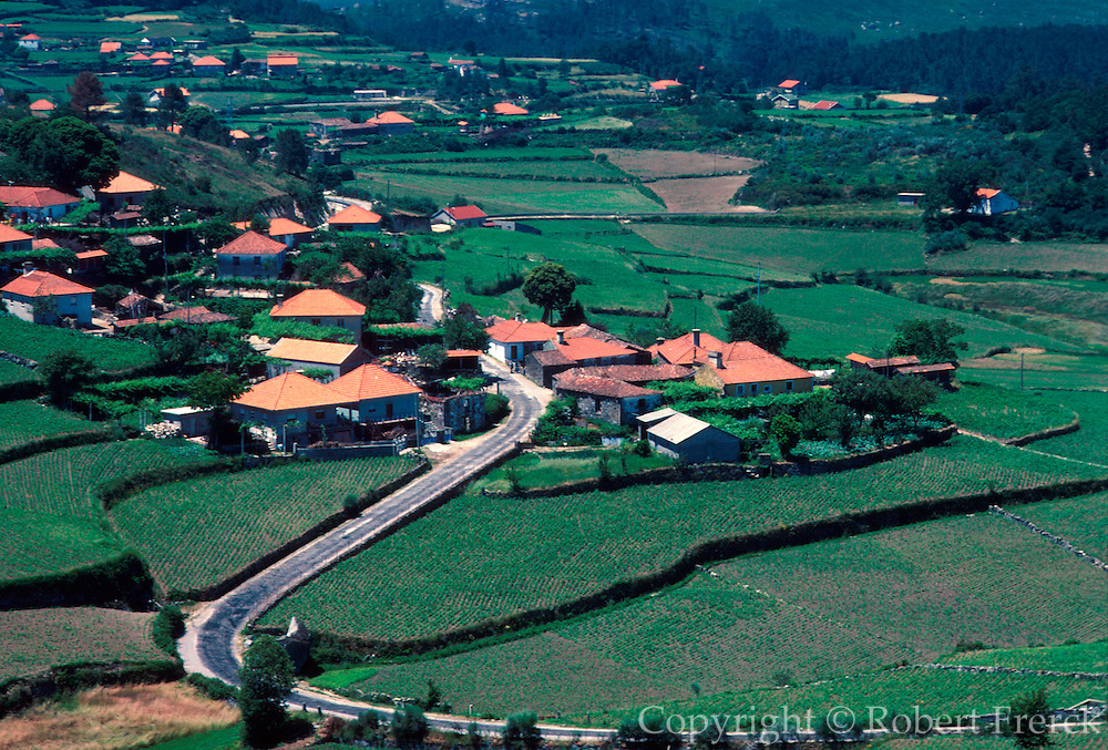 PORTUGAL, NORTH, AGRICULTURE farms and terraced fields near Braga