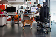 Office space at the headquaters of the web portal Seznam.cz located in Prague Smichov. Employees are allowed and welcome to take their dogs with them to work. Seznam.cz is a web portal and search engine in the Czech Republic. Founded in 1996 by Ivo Lukačovič in Prague as the first web portal in the Czech Republic. Seznam started with a search engine and an internet version of yellow pages. Today, Seznam runs more than 15 different web services and associated brands. Seznam had more than 6 million real users per month at the end of 2014.[3] Among the most popular services, according to NetMonitor, are its homepage seznam.cz, email.cz, search.seznam.cz and its yellow pages firmy.cz