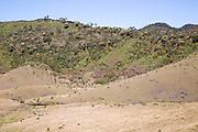 Montane grassland and cloud forest environment Horton Plains national park, Sri Lanka, Asia