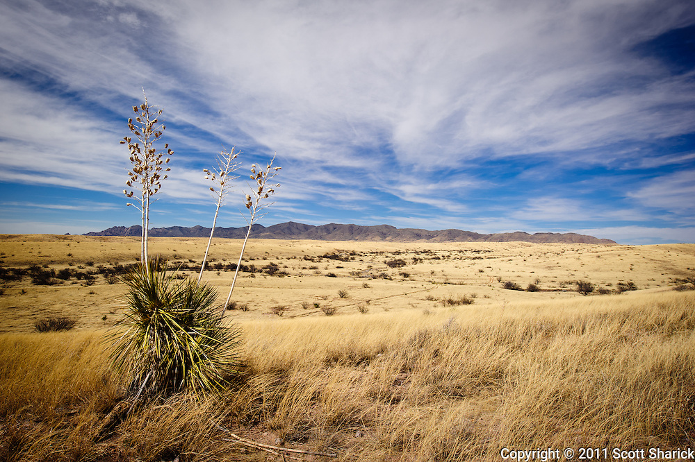 On the prowl for ghost towns in southeast Arizona I came across this view of the deserted surroundings.
