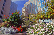 Pittsburgh, PA, Gardens, Downtown Hi-rises