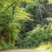 20120607 Location Rustic Road