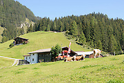 Remote alpine farmhouse photographed in Tirol, Austria