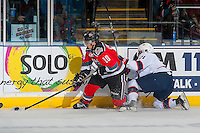 KELOWNA, CANADA - NOVEMBER 26: Dawson Leedahl #71 of the Regina Pats back checks Nick Merkley #10 of the Kelowna Rockets as he digs for the puck at the boards on November 26, 2016 at Prospera Place in Kelowna, British Columbia, Canada.  (Photo by Marissa Baecker/Shoot the Breeze)  *** Local Caption ***