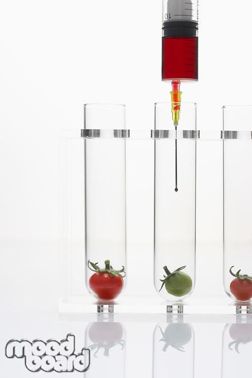 Syringe injecting red and green tomatoes in test tubes