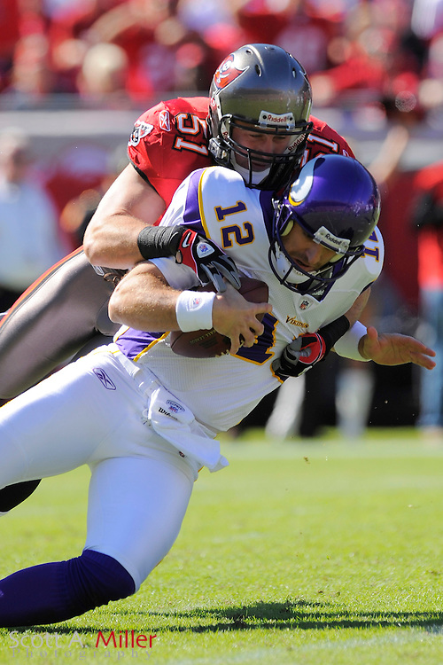 Nov. 16, 2008; Tampa, FL, USA;Tampa Bay Buccaneers defender Barrett Ruud (51) sacks Minnesota Vikings quarterback Gus Frerotte (12) during their game at Raymond James Stadium. The Bucs won 19-13. ...©2008 Scott A. Miller