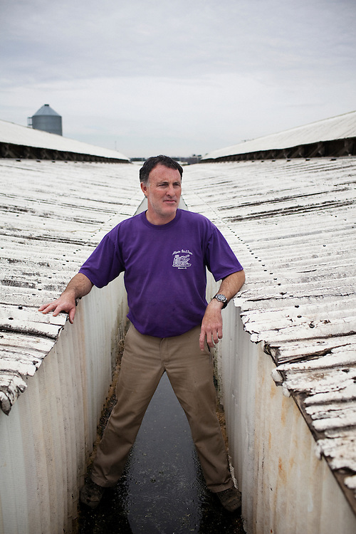 Stephen Paul Bonnecarrere Sr. stands in between two buildings where alligators are raised at Daneco Alligator Farm in Houma, Louisiana on Friday, February 19, 2010. Each compartment in these long and narrow buildings houses approximately 120 young gators which are raised in the dark and nourished by an automatic feeding system that was engineered by Stephen's father-in-law, Dane Ledet Sr.