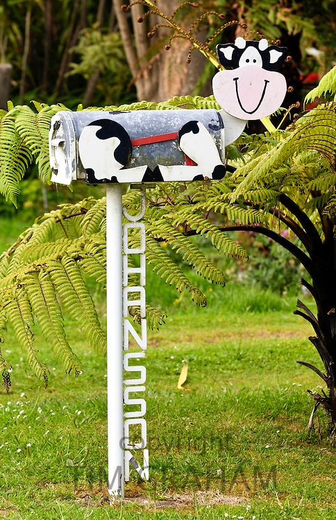 Cow design mailbox, North Island, New Zealand