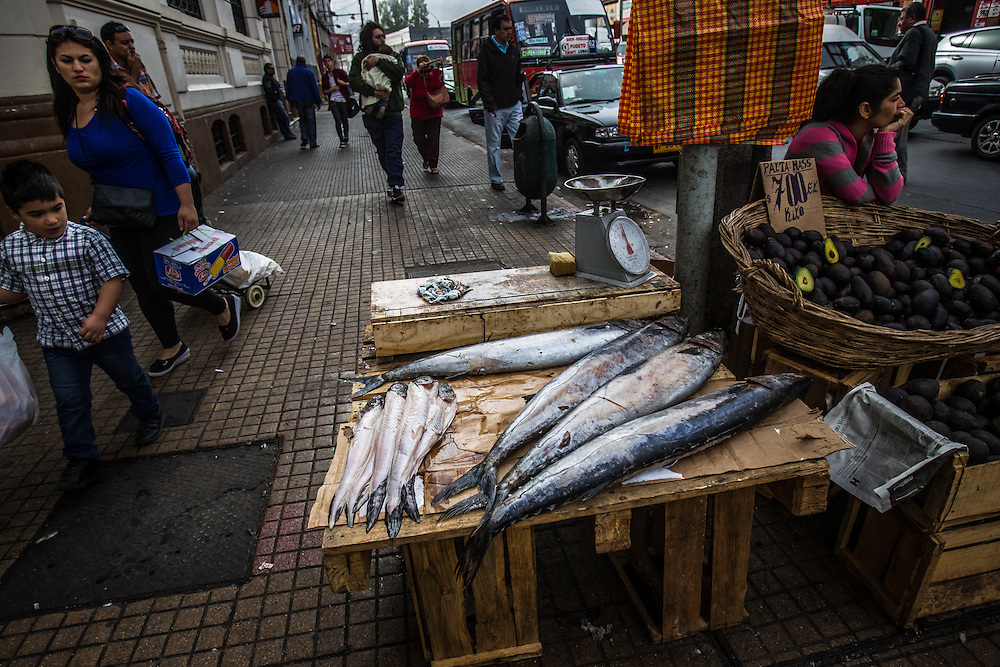 VALPARAISO, CHILE - MARCH 17, 2014: Fish caught by artisanal fishers on small tables in the city streets surrounding the market in Valparaiso, Chile.  PHOTO: Meridith Kohut for The World Wildlife Fund